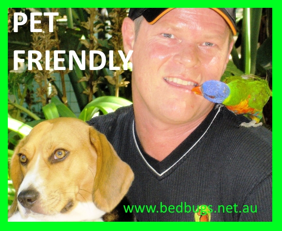 children-and-pet-friendly-bed-bug-pest-control