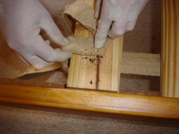 bed bugs hiding under the hession cloth in the bed palings.
