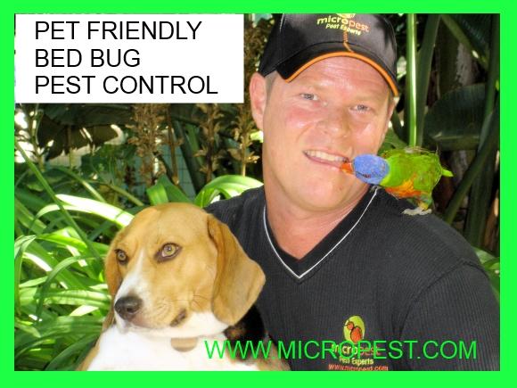 pet friendly bed bug pest control