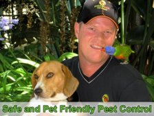 Pet friendly Bed Bug pest control